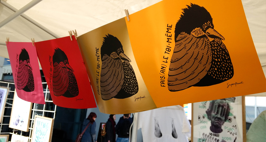 Photo du blog, impressions en sérigraphie réalisées par Superfruit pendant le festival les Airs Solidaires à l'université Paul Sabatier, Toulouse. Visuel de faisan doré créé par Superfruit