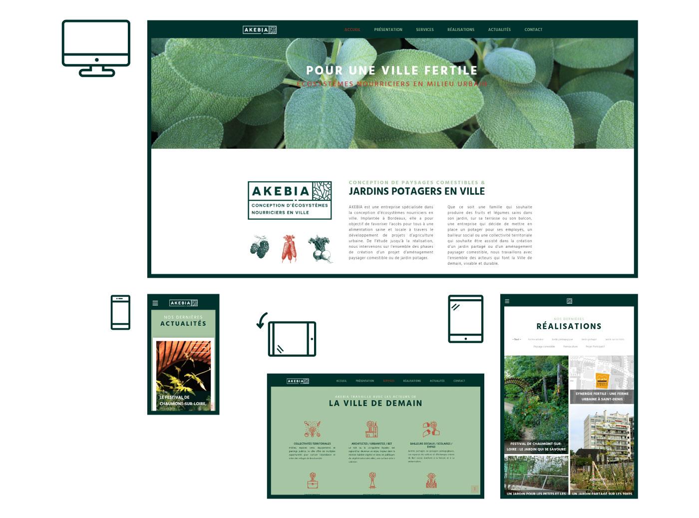 Visualisation du site internet en responsive d'Akebia Ecosystèmes sur ordinateur, tablette et smartphone