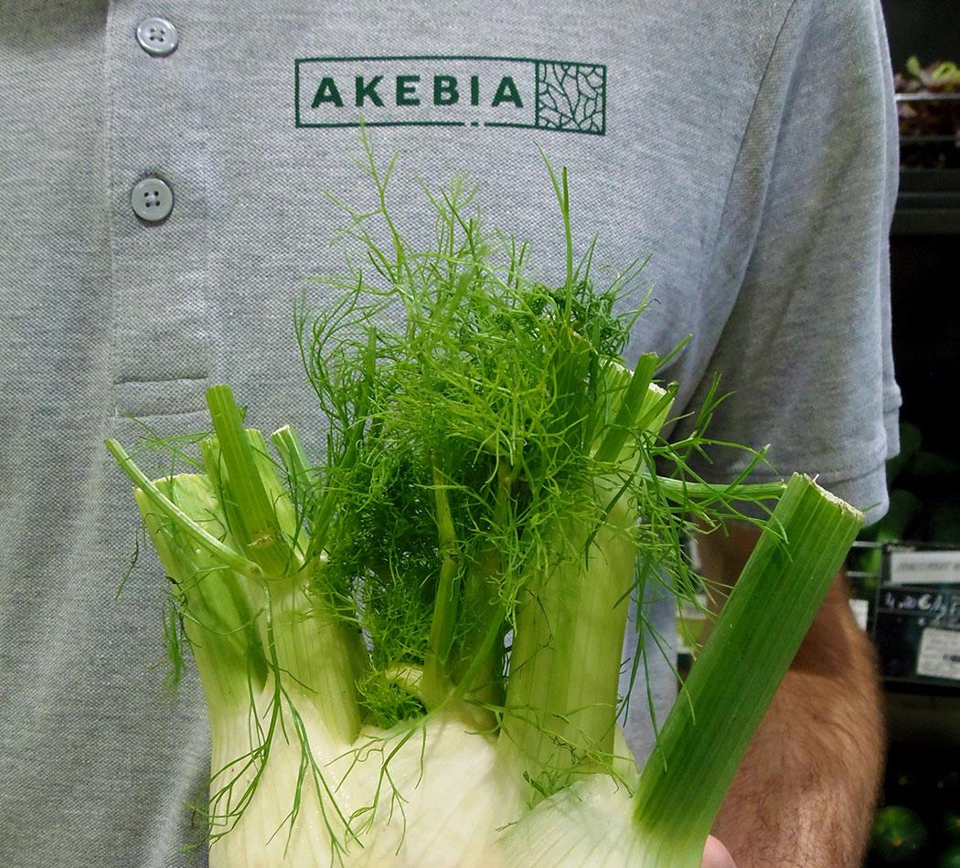 Thumbnail du blog, détail des supports textiles imprimés en sérigraphie par Superfruit pour Akebia