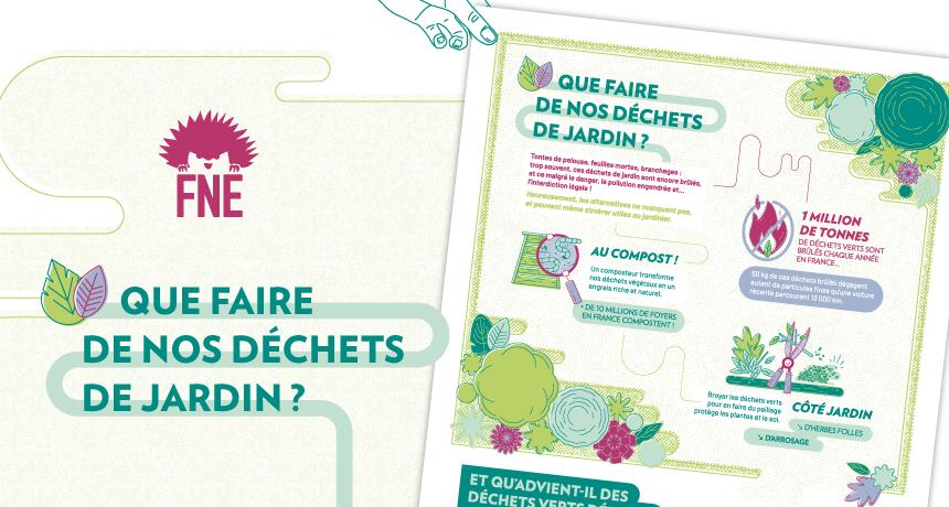 """Vignette de présentation du nouveau projet pour France Nature Environnement """"Que faire de nos déchets de jadrin?"""" : apperçu de l'affiche et des illustrations végétales"""
