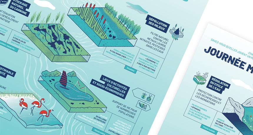 Détail des types de zones humides sur l'affiche pour France Nature Environnement.